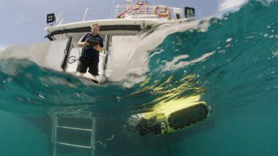 LarvalBot, rejuvenecedor de arrecifes, extiende millones de bebés de coral