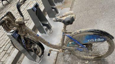 Photo of Missing Citi Bike encontrado cubierto en Barnacles