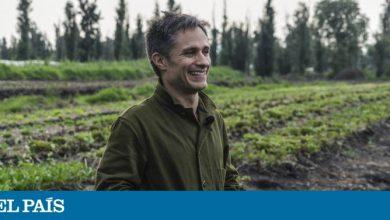Photo of Gael García Bernal estrena 'Chicuarotes' en el fango