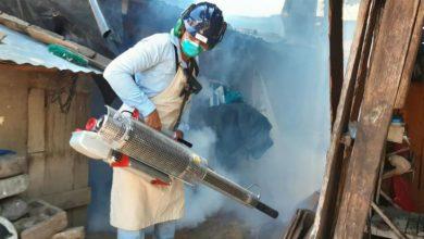 Nicaragua decreta alerta epidemiológica por dengue