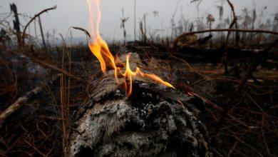 Asegura Bolsonaro que incendios no han alcanzado áreas protegidas