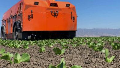 Photo of FarmWise y su cosecha de agribot que arranca la maleza $ 14.5M en financiamiento