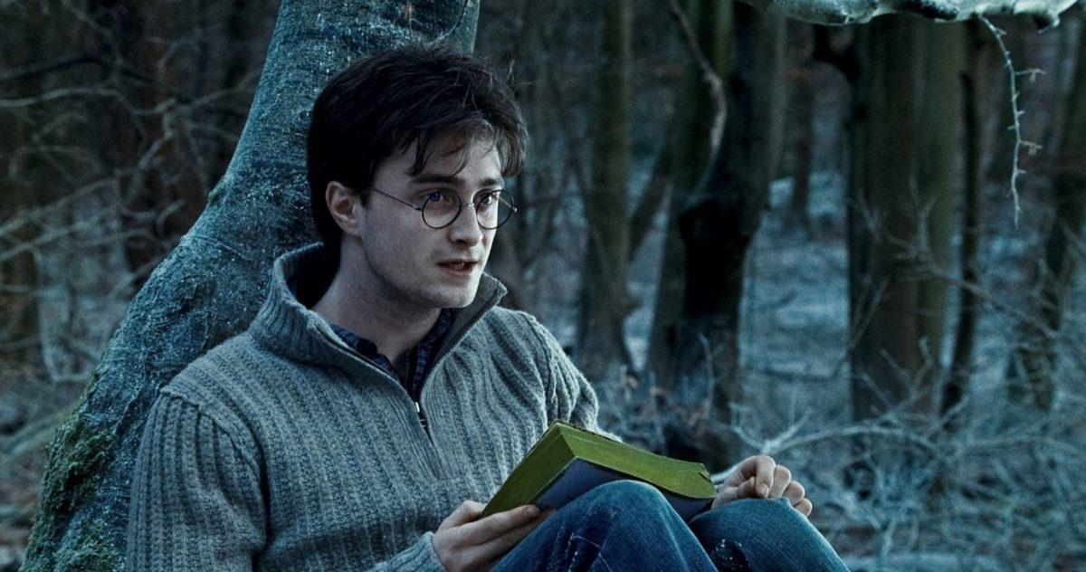 Harry Potter 10 Cosas En Las Reliquias De La Muerte Parte 1 Que Solo Tienen Sentido Si Lees Los Libros La Neta Neta