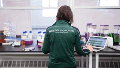 La tienda de desarrollo de Ginkgo Bioworks para programación genética ahora vale $ 4 mil millones