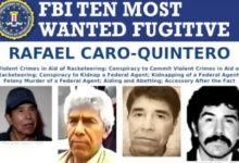 EU busca decomisar bienes de Rafael Caro Quintero