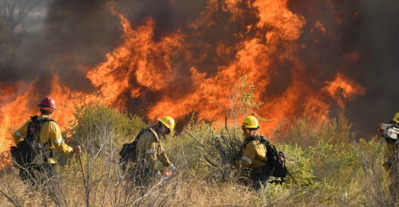 Desalojan a 50 mil personas de Los Ángeles por incendios forestales   Video