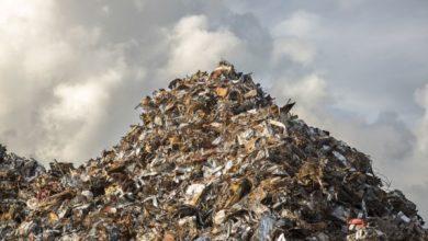 Photo of El graduado de YC Genecis Bioindustries convierte el desperdicio de alimentos en plásticos compostables