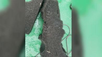 Hallan restos de esponja que podrían ser de avión chileno desaparecido