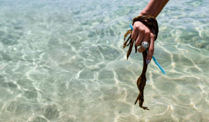 Las alternativas de plástico a base de algas de Loliware obtienen $ 6 millones de semillas de inversores con conciencia ecológica