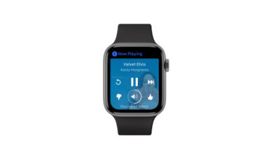 Photo of La nueva aplicación Apple Watch de Pandora te permite dejar tu iPhone atrás