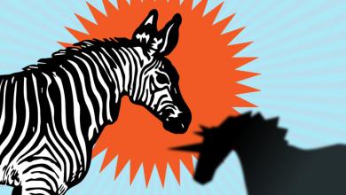 Photo of Dentro del esfuerzo por convertir las startups en cebras, no en unicornios